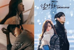 'Lost' and 'Snowdrop' Posters